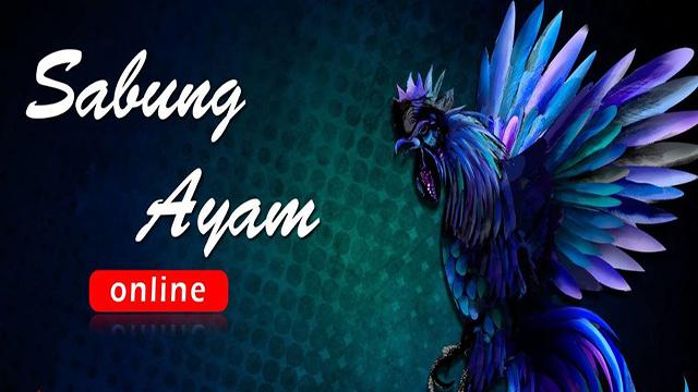 SabungAyam Online